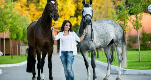 пансион для лошадей в equides club