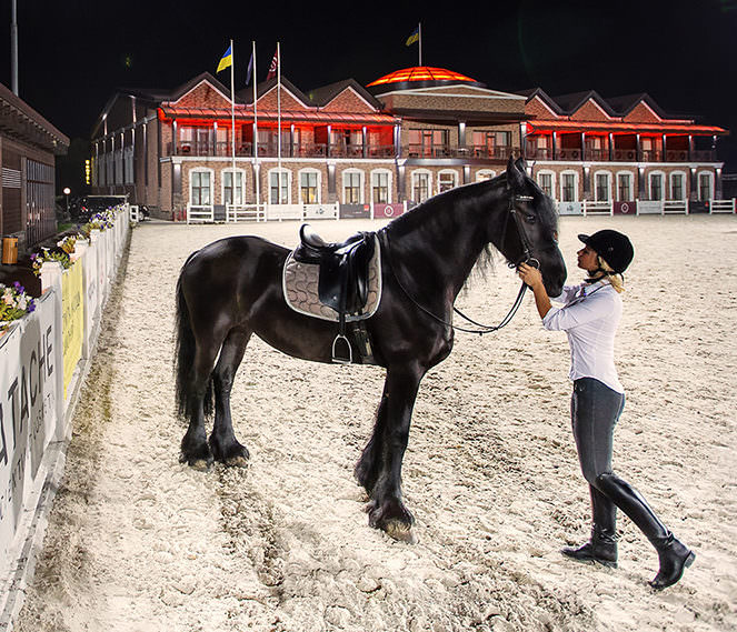 уроки верховой езды в Киеве